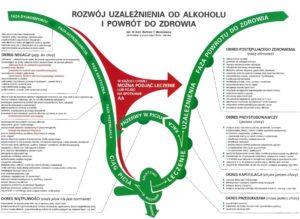 fazy alkoholizmu wykres