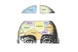 Specjaliści od uzależnień – psycholog, psychoterapeuta, psychiatra